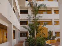 Las Palmeras Residencial - 2